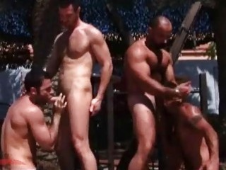 Strong Gay Pins With Wild Group Sex In The Open Air